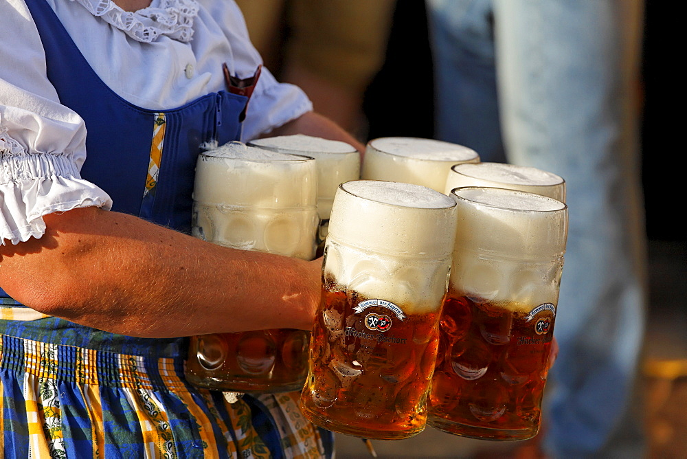 Oktoberfest, Munich beer festival, Bavaria, Germany