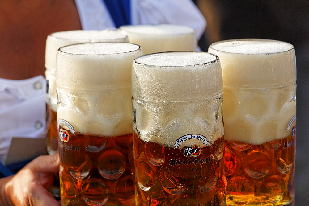 Oktoberfest, Munich beer festival, Bavaria, Germany - 832-336652