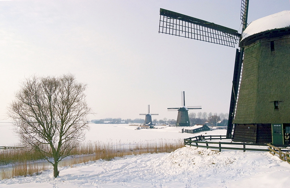 Windmills, near Schermerhorn in winter, north of Holland