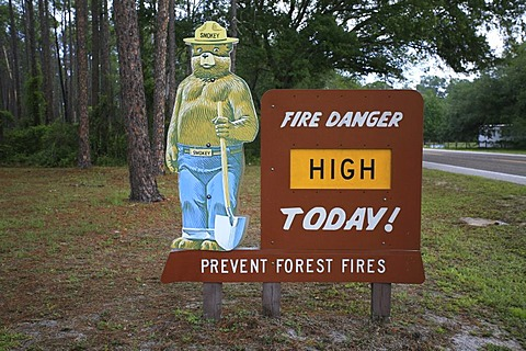 Fire Danger High Today, Mr. Smokey, Ocala Forest, Florida, USA