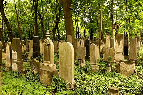 Jewish cemetery, 1827, Prenzlauer Berg, Berlin, Germany, Europe