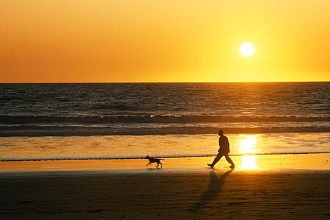 Venice Beach, Santa Monica, Los Angeles, California, USA