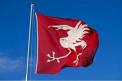 Flag of Gruyeres, canton of Fribourg, Switzerland