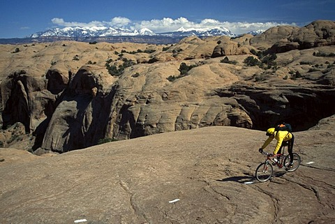 Mountain biker, Moab, Slickrock, Utah, USA