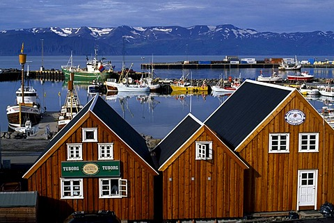 Harbour of Husavik, Iceland - 832-339792