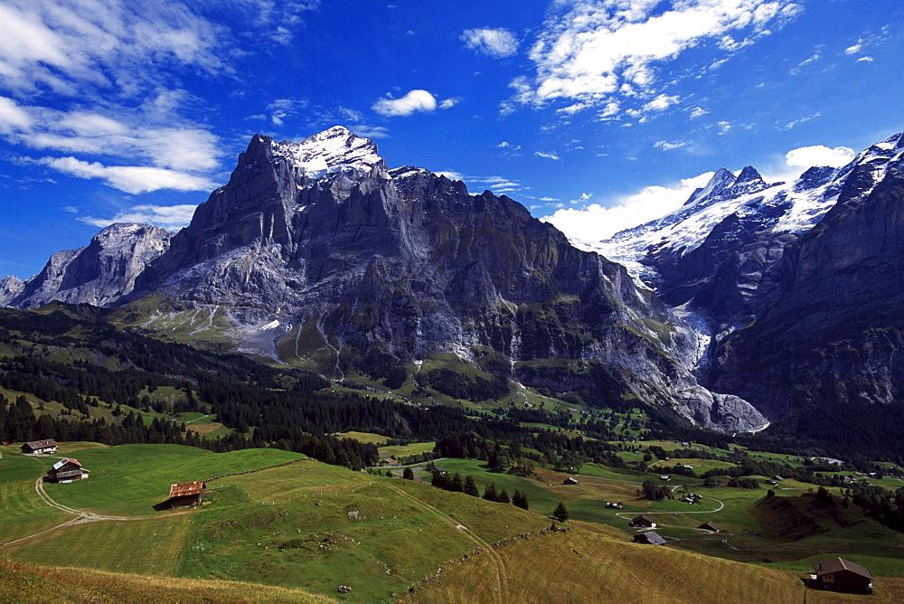 Big Scheidegg, Wetterhorn, Grindelwald, Bernese Oberland, Switzerland
