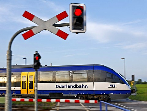 Oderlandbahn train crossing a railway-crossing, Brandenburg, Germany, Europe