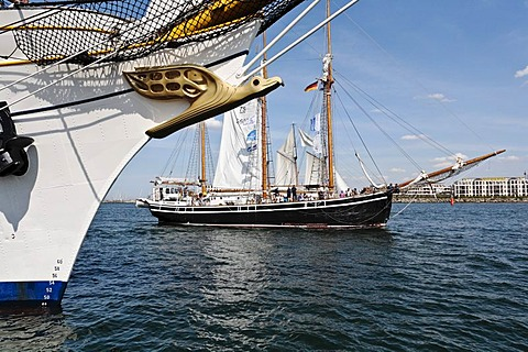 Albatross as a figurehead of the Gorch Fock, sailing school ship of the German Navy, and the Swedish Schooner named Westkust, Hanse Sail 2008 in Warnemuende, Mecklenburg-Western Pomerania, Germany, Europe