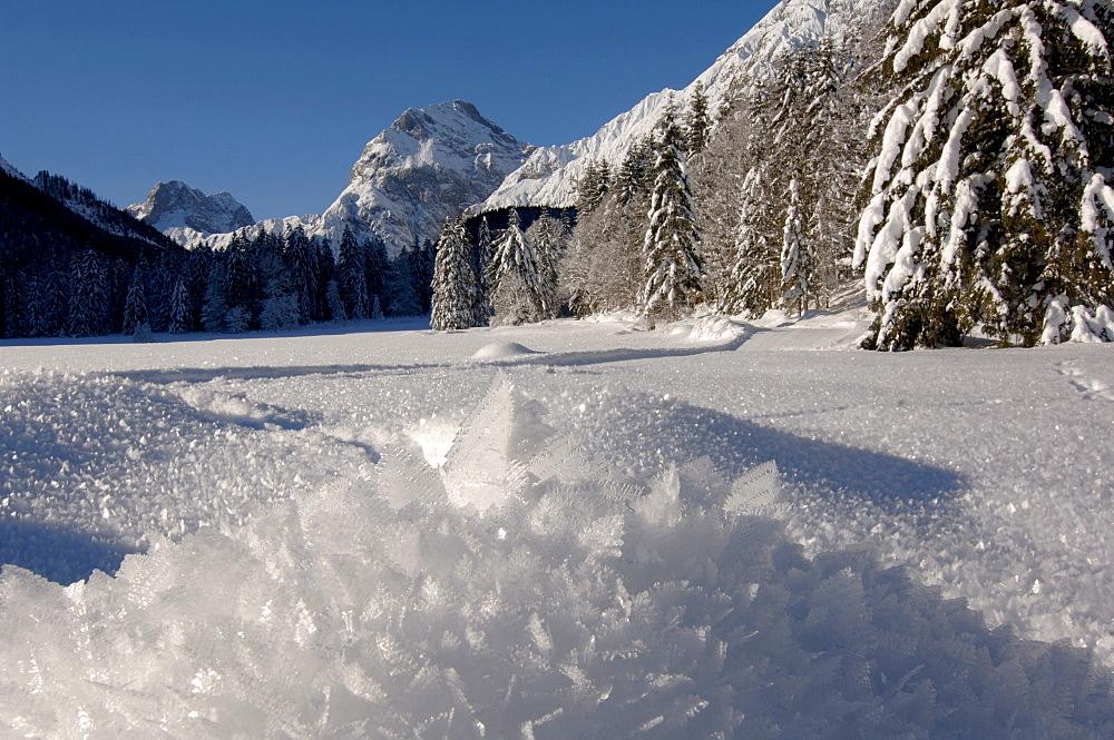 Ice crystals, Karwendel Range in the background, North Tirol, Austria, Europe