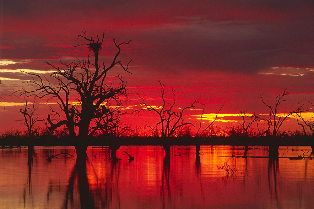 Sunset over Lake Menindee, Kinchega National Park, New South Wales, Australia, Oceania