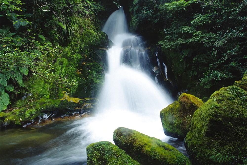 Waterfall, North Island, New Zealand, Oceania