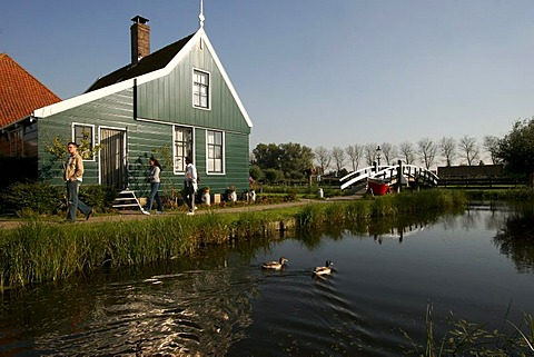 The characteristic wooden houses as in the 17th century in the Museum Zaanse Schans, Zaandam, Netherlands, Europe