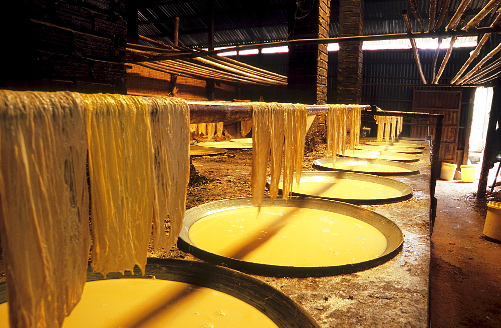 Bean curd sheet production, Mekong Delta, Vietnam, Asia