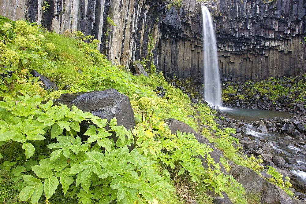 Svartifoss Falls, Skaftafell National Park, Iceland, Atlantic Ocean