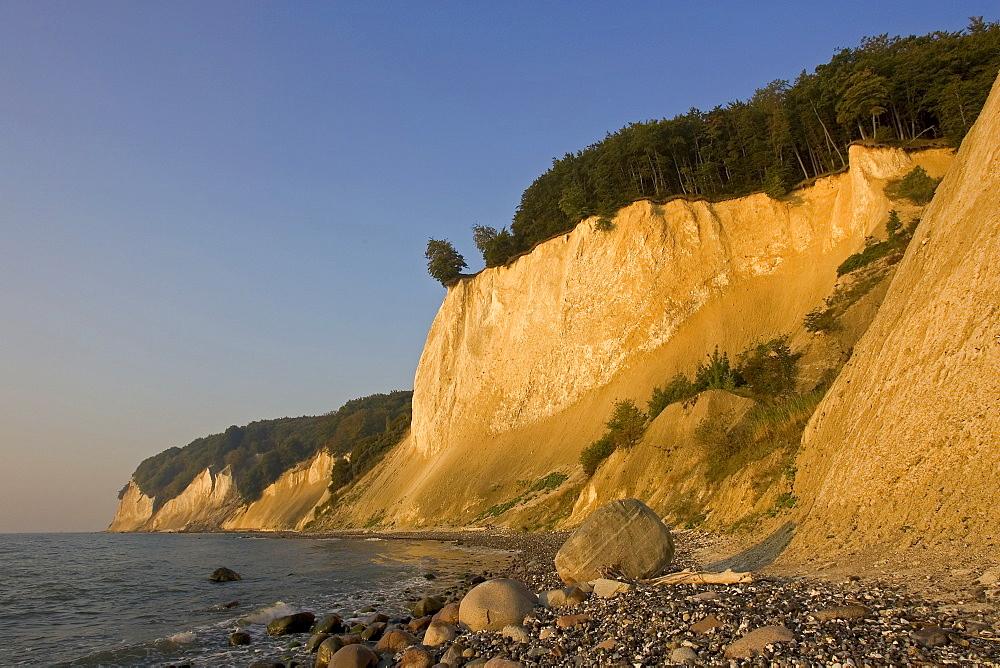Chalk cliffs, Jasmund National Park, Ruegen Island, Mecklenburg-Western Pomerania, Germany, Europe