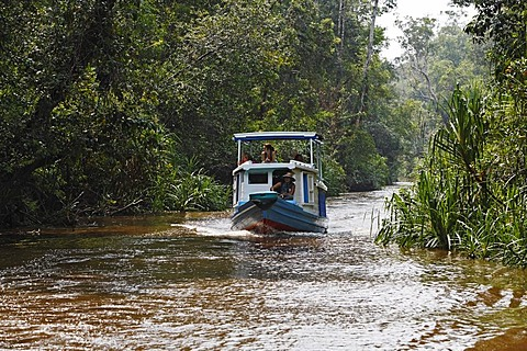 Boat (Klotok) on river Sungai Sekonyer in Tanjung Puting National Park, Central-Kalimantan, Borneo, Indonesia