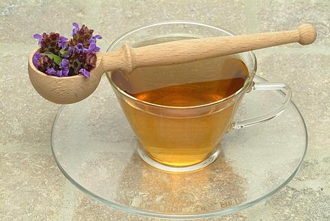 Herb tea made of Prunella, carpenter's herb, Prunella vulgaris