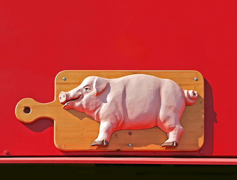 Pig on promotional sign