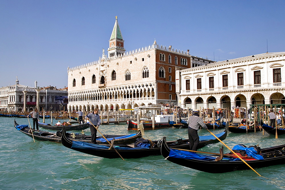 Gondolas in front of Palazzo Ducale di Venezia, Doge's Palace, Venice, Italy, Europe