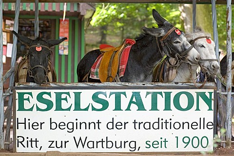 The donkey station below the Wartburg Castle, Eisenach, Thuringia, Germany