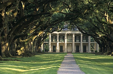 Oak Alley Plantation at the Mississippi river