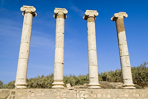 Roman archeological site of Leptis Magna