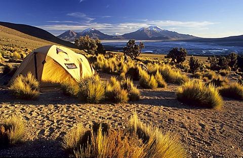 Camp at Cerro Rojo, Salar de Surire, Reserva Nacional de las Vicunas, Lauca National Park, Chile