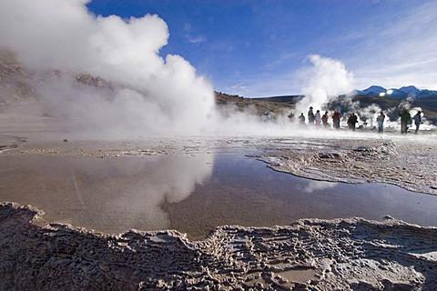 Geyser at the geyserfiel of El Tatio, Chile