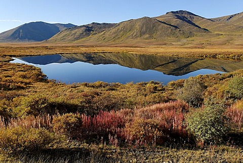 Lake in Tombstone Territorial Park, Dempster Highway, Yukon Territory, Canada