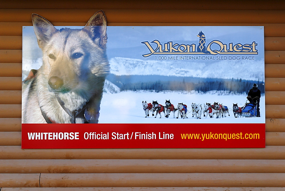 Poster of the Yukon Quest dogsledrace, Whitehorse, Yukon Territory, Canada