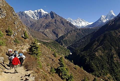 Yak caravane at Dudh Koshi valley, Sagarmatha National Park, Khumbu Himal, Nepal