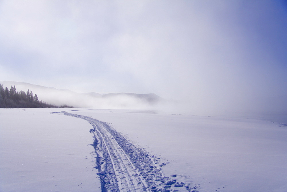 Sled tracks disappearing in the fog, frozen Lake Laberge, Yukon Territory, Canada