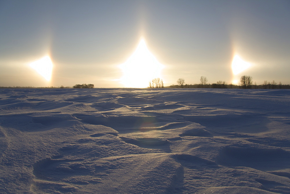 Sun dog, parhelion, parhelia, snow-covered Great Plains in winter, Manitoba, Canada