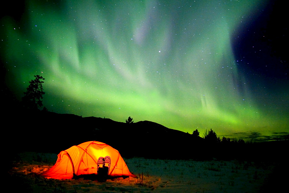 Tent with snowshoes, Northern Lights (Aurora borealis) overhead, Yukon Territory, Canada, North America