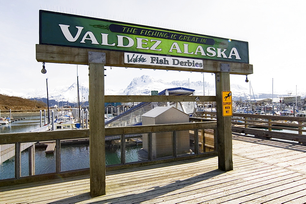 Valdez Fish Derbies, sign, Small Boat Harbour, Valdez, Prince William Sound, Alaska, USA