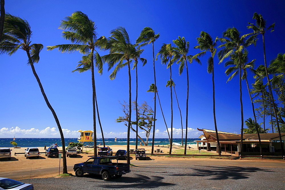 Baldwin Beach Park with palm trees, a golden sandy beach and a surf rescue tower, Paia, Maui Island, Hawaii, USA