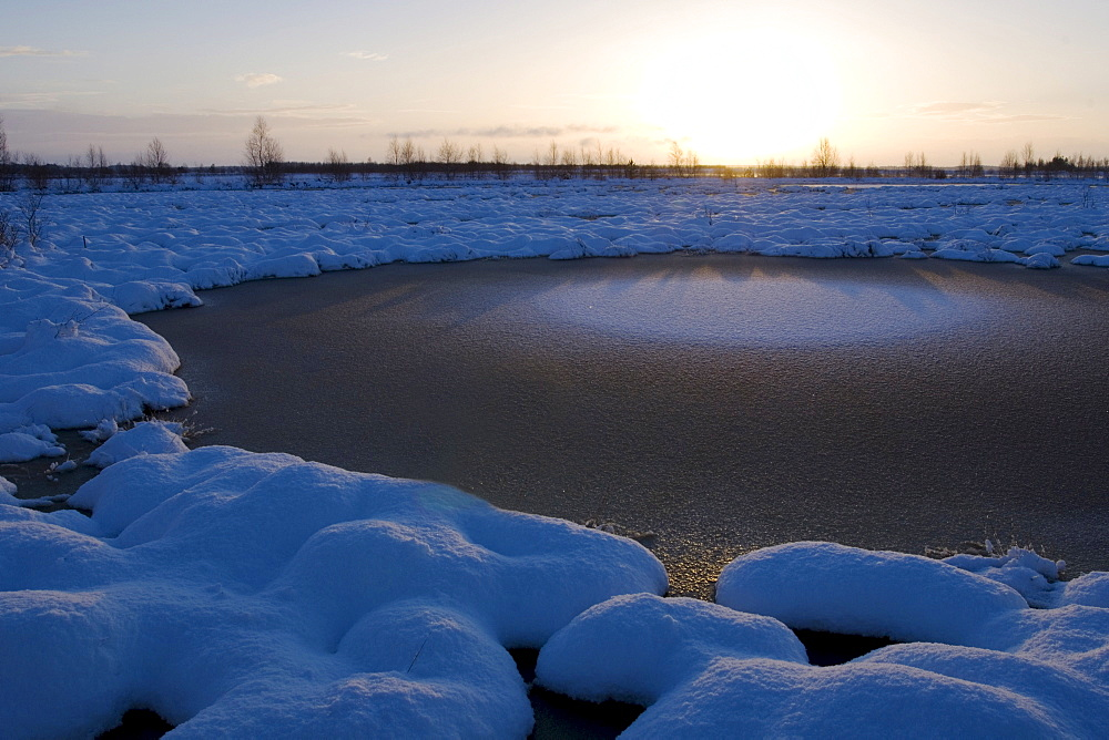Winter in a bog, moor, sunrise, Goldenstedt, Lower Saxony, Germany