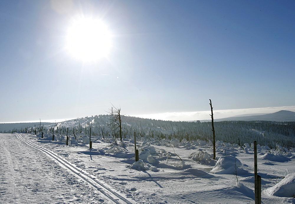 Cross country ski tracks on Mt. Fichtelberg, Oberwiesenthal, Erzgebirge, Ore Mountains, Saxony, Germany
