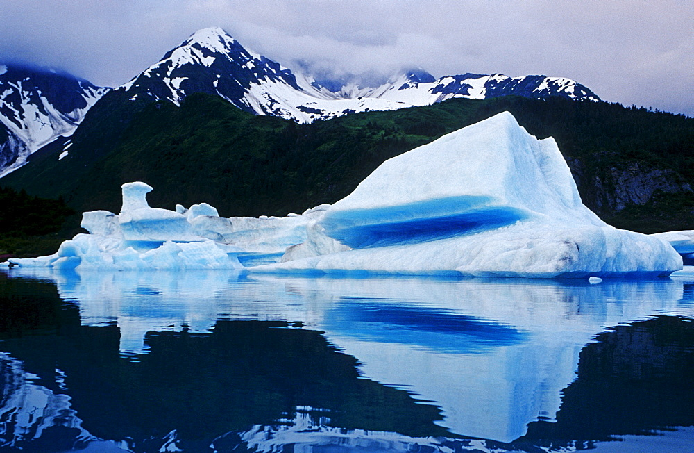 Arctic mood, Kenai Fjords National Park, Alaska, USA