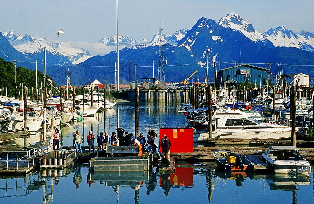 Valdez Harbor, Prince William Sound, Alaska, USA