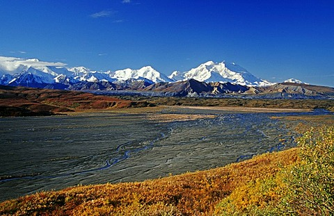 Riverbed and autumn tundra with Mt. McKinley at the back, Denali National Park, Alaska, USA