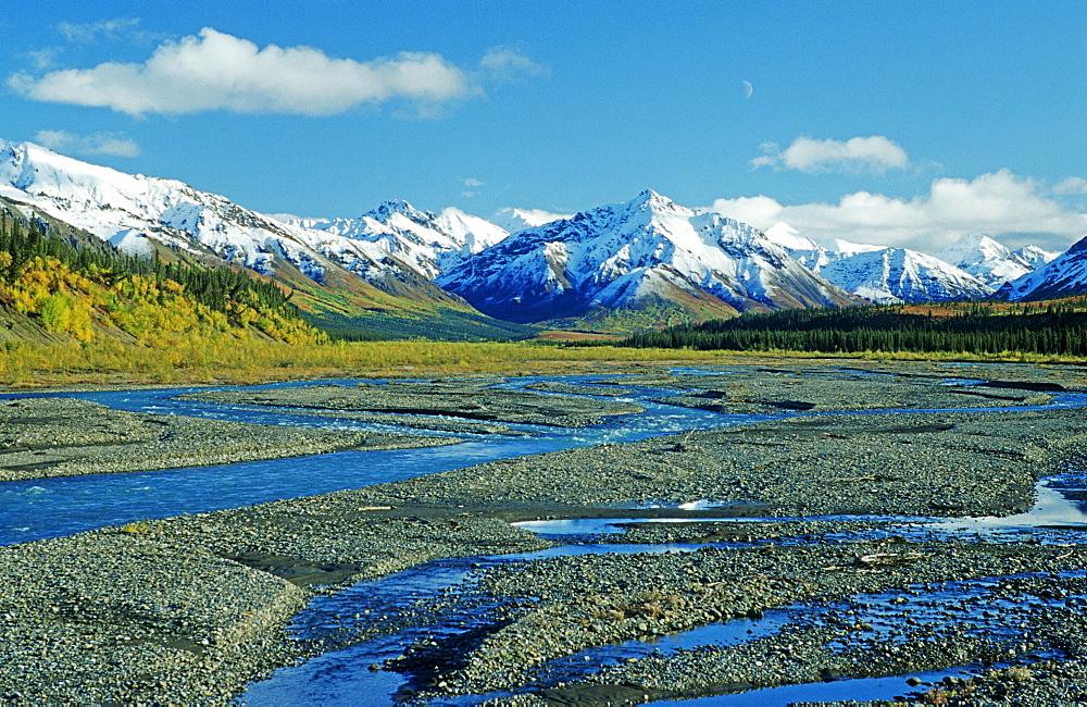 The far-branching Teklanika River flowing from the mountains of the Alaska Range, Denali National Park, Alaska, USA