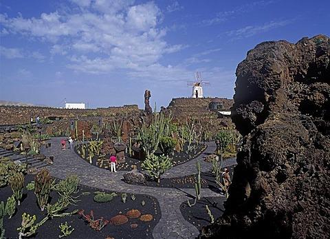 Jardin de Cactus near Guatiza ( founded by Cesar Manrique ) Lanzarote, Canary Islands, Spain, Europe
