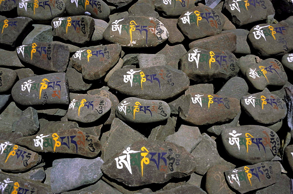 Mani stones with ornate Old Tibetan lettering: OM MANI PADME HUM, Ladakh, India, Asia