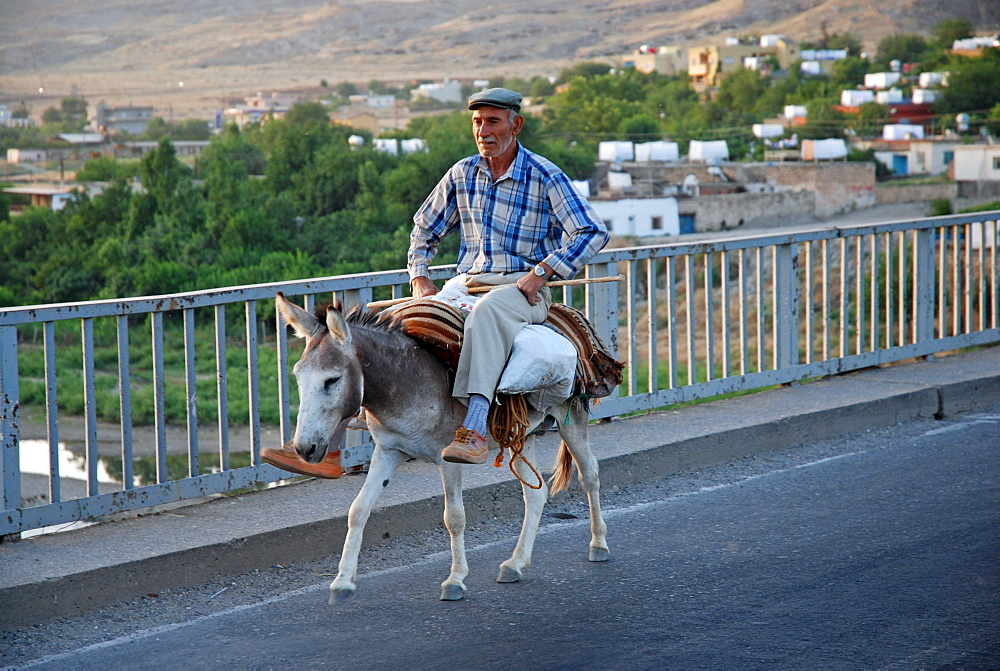 Kurdish man riding a donkey, Hasankeyf, southeastern Anatolia, Turkey, Asia