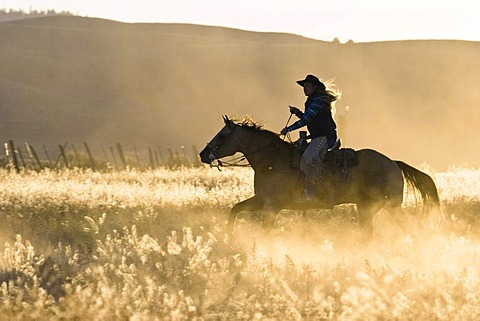 Cowgirl riding, Oregon, USA