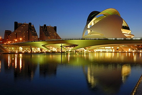Palau de les Arts Reina Sofia, opera house, Ciudad de las Artes y de las Ciencias (City of Arts and Sciences), Valencia, Valencia, Spain - 832-366439
