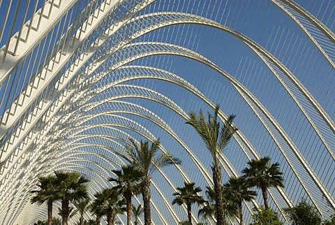 Umbracle, Ciudad de las Artes y de las Ciencias (City of Arts and Sciences), Valencia, Valencia, Spain