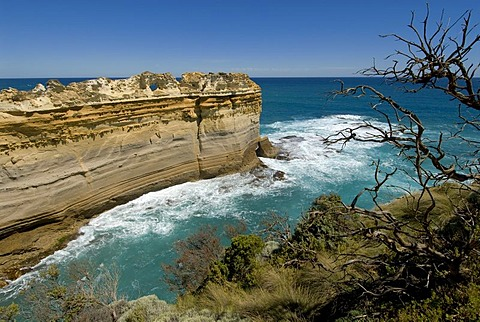 Great Ocean Road, The Razorback limestone cliff, Southern Ocean, Victoria, Australia