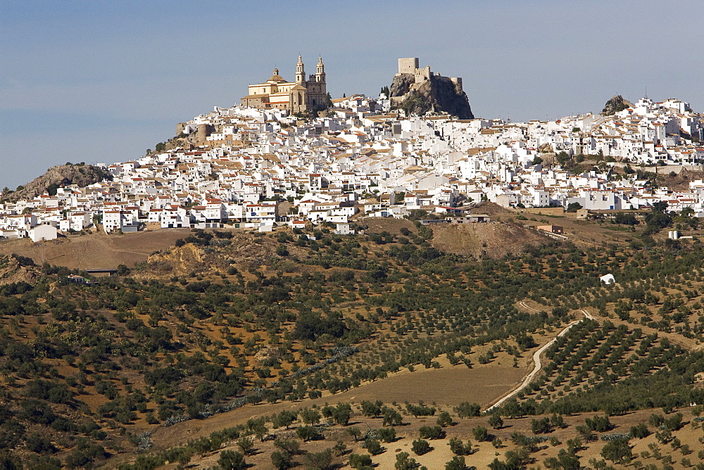 Parroquia de Nuestra Senora de la Encarnacion (Parish of Our Lady of the Incarnation) next to the fortress in Olvera, Andalusia, Spain, Europe